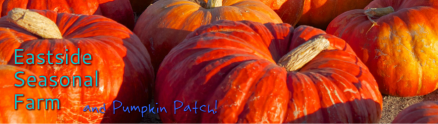eastside_pumkin_farm